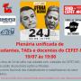 24J plenaria